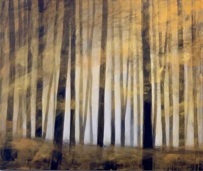 Ernesto Morales, 'Forest I', 2019