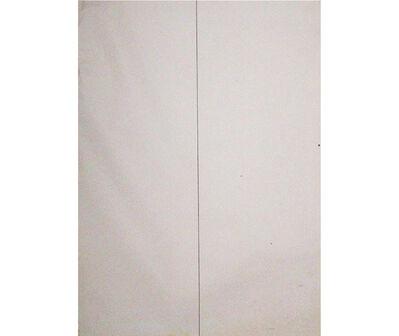 Jaime Higa Oshiro, 'Línea vertical, línea horizontal e intersección de línea vertical y horizontal', 1984