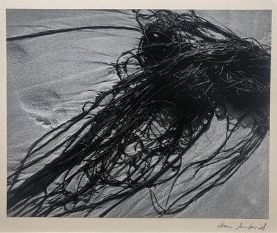 Aaron Siskind, 'Gloucester, seawood', 1940