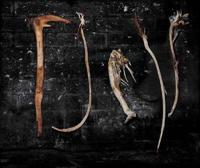 Amon Yariv, 'Wood and Ropes', 2007