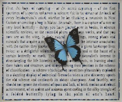 Jane Hammond, 'FOUR WAYS TO BLUE', 2006