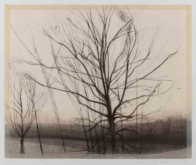 Sylvia Plimack Mangold, 'The Pin Oak at The Pond', 1986