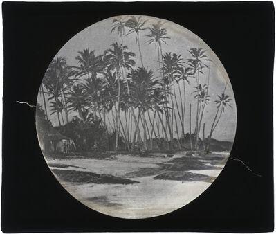 Augustus Le Plongeon, '[Belize?]', 1873-1924