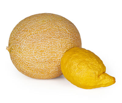 Derrick Guild, 'Melon Lemon', 2006