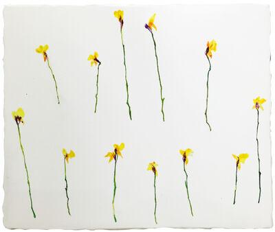 Lin-Yuan Zeng, 'In memories 1', 2015