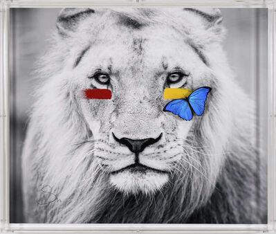 SN, 'Lion ', 2019