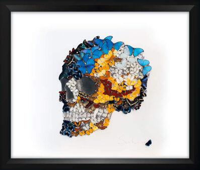 SN, 'Butterflies Skull 3', 2016