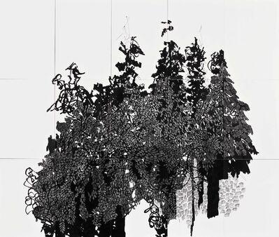 Candelaria Palacios, 'Zumbidos', 2017