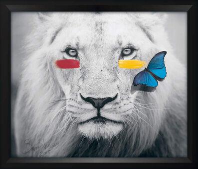 SN, 'LION'