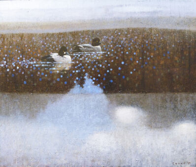 Ewoud De Groot, 'Goldeneyes Between Ice'