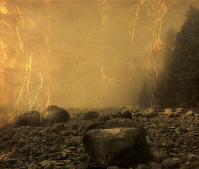 Joyce Tenneson, 'Moose Point Trees and Rocks'