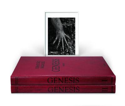 Sebastião Salgado, 'Sebastião Salgado. GENESIS, Art Edition D', 2004
