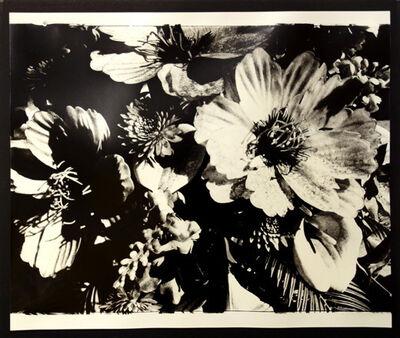Daido Moriyama, 'untitled', unknown