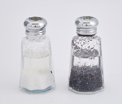 Nina Katchadourian, 'Salt and Pepper Shaker (from the Peter Norton Family Christmas Project', 2007