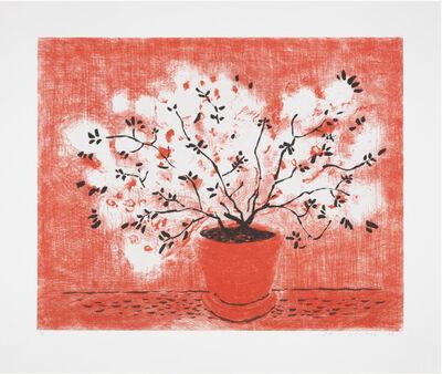 David Hockney, 'Red Wire Plant', 1998