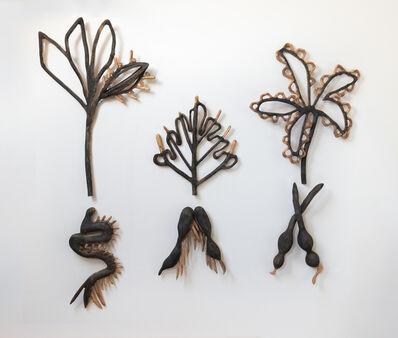 Loren Eiferman, 'Wood Sculpture, 287 pieces: 'Specimens'', 2018