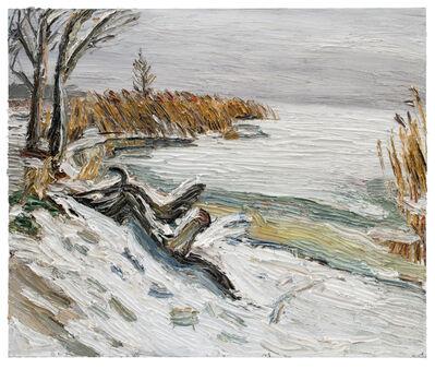 Christopher Lehmpfuhl, 'Wintertag Am Lieper Winkel (Usedom)', 2018