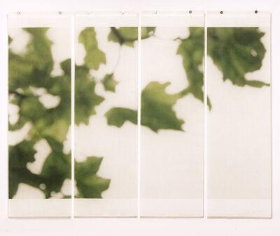 Jeri Eisenberg, 'On the Canopy Edge', 2014