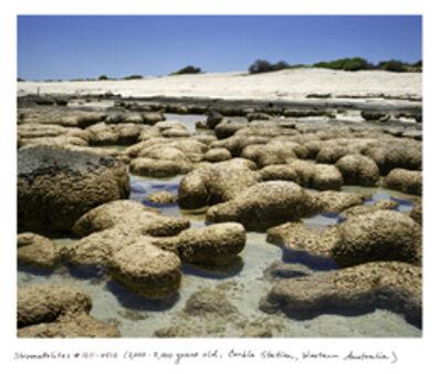 Rachel Sussman, 'Stromatolites'
