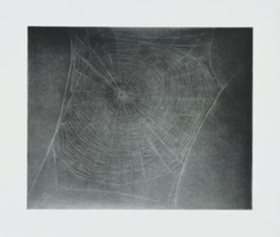 Vija Celmins, 'Untitled                      (Web 4)', 2002