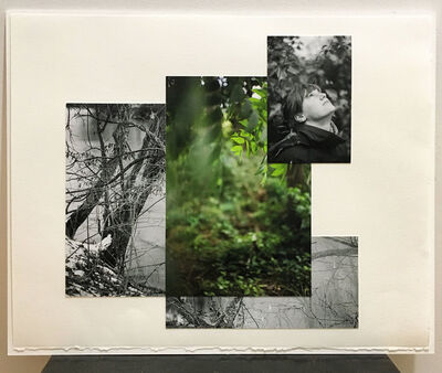 Monika Sosnowski, ' Lost Landscape no. 1', 2020