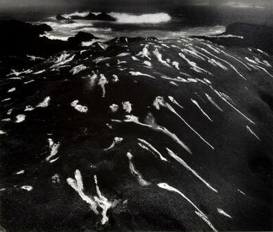 Minor White, 'Bird Lime & Surf, Point Lobos, California', 1951