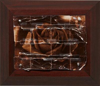 Doug & Mike Starn, 'The Rose', 1982-1991