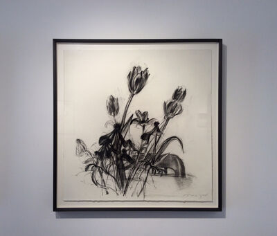 Michael Mazur, 'untitled (Flowers 3)'