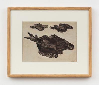 Prunella Clough, 'Skull Bone: Study', 1947