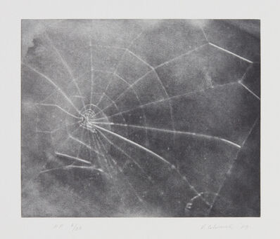 Vija Celmins, 'Untitled (Web #5)', 2009