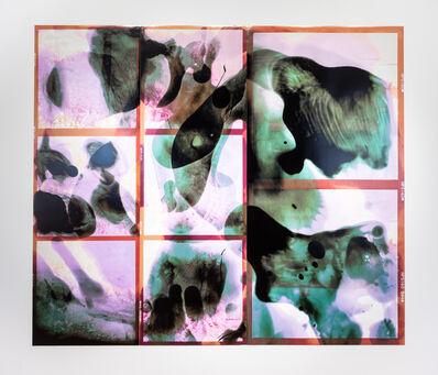 Corine Vermeulen, '209P / Linear (Belle Isle)', 2019