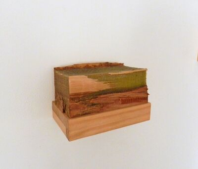 Tom Hollenback, 'Volumetric Painting - Green Rectangle'