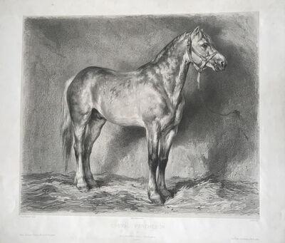 Rosa Bonheur, ' Cheval Percheron, Plate 6, from Etudes de Cheval', ca. 1880-1889