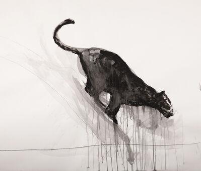Adriana Cuellar, 'Panther No. 4', 2018