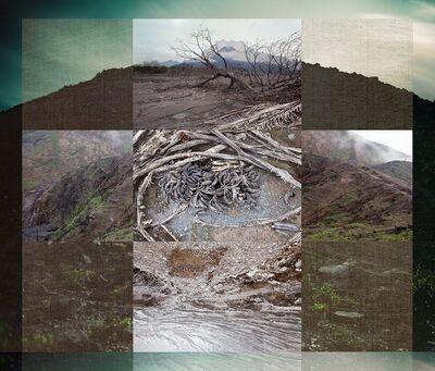 Meridel Rubenstein, 'Pyroclastic Remains'