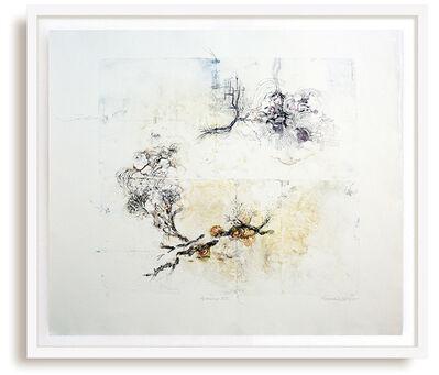 Susan Collett, 'Lineage XII - delicate, copper, oil ink, sketch, monoprint on archival paper', 2016