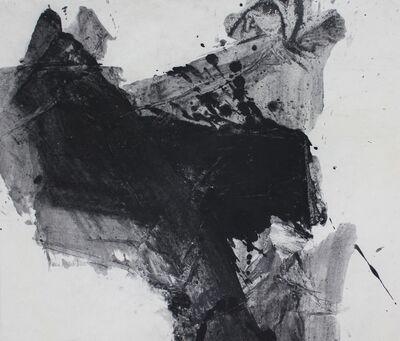Lan Zhenghui, 'D Series No.15 D系列之十五', 2009