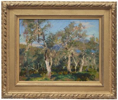 John Singer Sargent, 'Olives at Corfu', 1909
