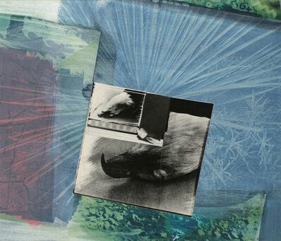 John Wood, 'Eagle Pelt', 1988