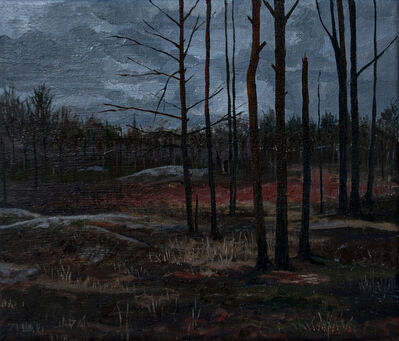 Fanny Arnesen, 'A distant memory', 2020