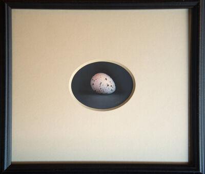 Kate Breakey, 'Quail Egg 47', 2019