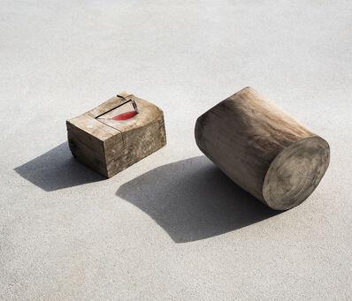 Ilán Rabchinskey, 'Wood, metal, chromatic filter', 2017