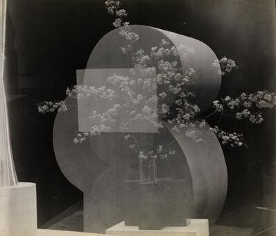 Constantin Brâncuși, 'Timidité, Bouquet en surimpression', c. 1928