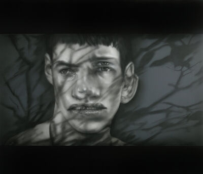 Anthony Goicolea, 'Shadow Projection Portrait (Boy in Woods)', 2017