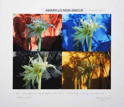 Peter Arthur Hutchinson, 'Amaryllis Mon Amour', 2015