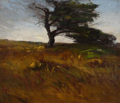 Franklin De Haven, 'Windblown Meadow', 1898
