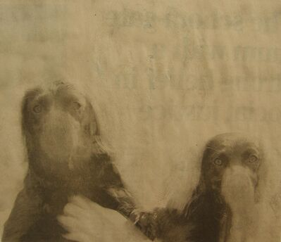 Matt Bryans, 'Untitled (Two Dogs)', 2005