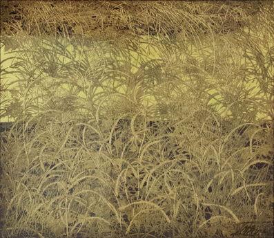 Toshimitsu Imai, 'Untitled', 1995