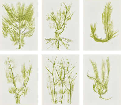 Giuseppe Penone, 'Trentatré Erbe (Thirty-three Herbs)', 1989