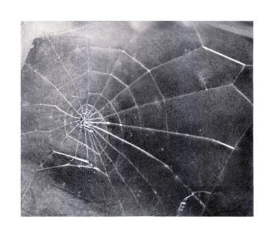Vija Celmins, 'Spider Web', 2009